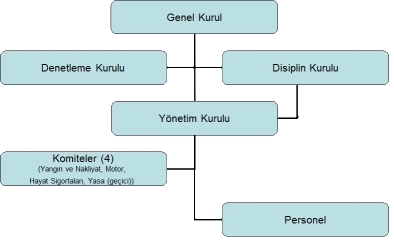 yonetim